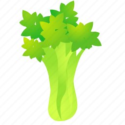 celery, food, green, health, organic icon