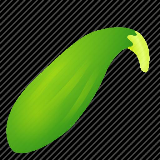 food, green, health, organic, zucchini icon