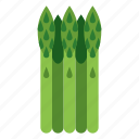 asparagus, food, plant, vegetables