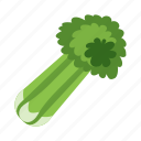 celery, food, vegetables