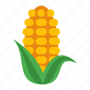 food, corn, vegetables