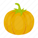 agriculture, food, garden, gourd, plant, pumpkin, vegetables icon