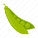agriculture, food, meal, peas, pease, plant, vegetables icon