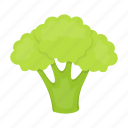 agriculture, brussels sprouts, food, garden, plant, vegetables icon