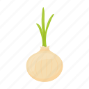 agriculture, food, garden, onion, plant, vegetable, vegetables icon