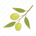 branch, cooking, food, oil, olive, plant, tree icon