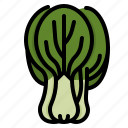 bok, cabbage, chinese, choy, kitchen, vegetable icon
