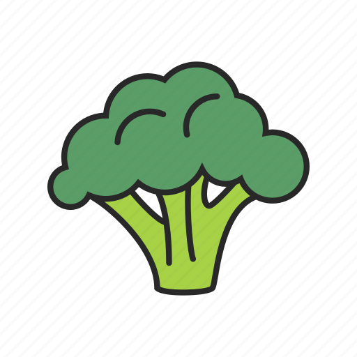 Image result for broccoli icon