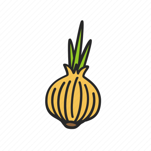 cooking, food, ingredient, onion, vegetable icon