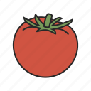 food, fruit, healthy, tomato, vegetable icon
