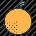 winter, seasonal, food, fruits, orange, oranges, citrus
