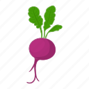 beet, beetroot, cartoon, leaf, root, vegetable, vegetarian icon