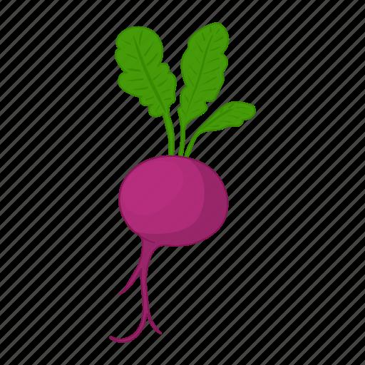 Beet, beetroot, cartoon, leaf, root, vegetable, vegetarian icon - Download on Iconfinder