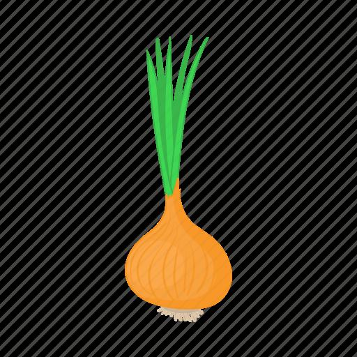 cartoon, food, fresh, healthy, onion, vegetable icon
