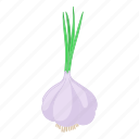 cartoon, clove, fresh, garlic, organic, plant, vegetable icon