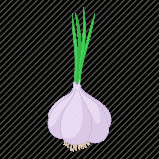 cartoon, clove, fresh, garlic, organic, plant, vegetable icon