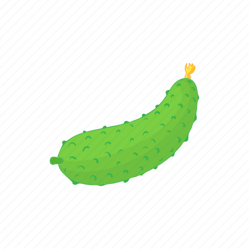 cartoon, cucumber, food, fresh, organic, vegetable icon