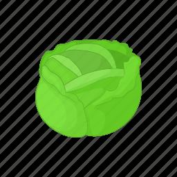cabbage, cartoon, food, fresh, healthy, organic, vegetable icon