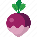 purple, radish icon
