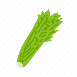 celery, farm, food, organic, vegetable, vegetarian icon
