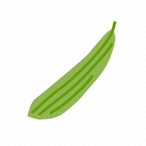 farm, food, organic, ridge gourd, vegetable, vegetarian icon