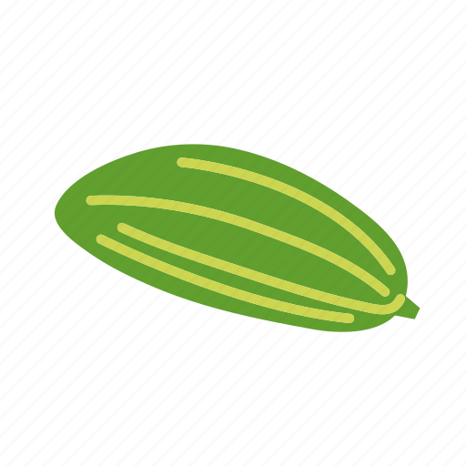 farm, food, organic, pointed gourd, vegetable, vegetarian icon