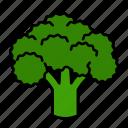 vegetable, broccoli, food, greens, leafy, veggies, organic