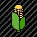 vegetable, maize, corn, cob, grain, organic, cereal