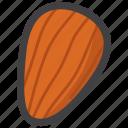 almond, nut icon
