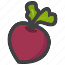 beetroot, food, fruit icon