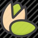 nut, pista, pistachio icon