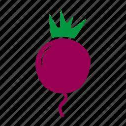 beets, food, healthy food, ingridient, radishes, vegetagles icon