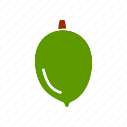 food, fruit, healthy food, ingridient, lemon, lime icon