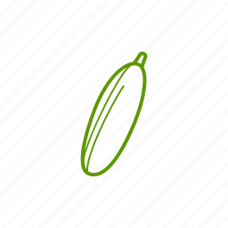 cucumber, food, ingredients, vegetable, zucchini icon