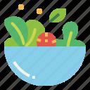 food, fresh, salad, vegetable, vegetatrian icon