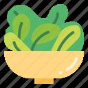 fresh, greens, salad, vegetable, vegetatrian icon