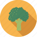 broccoli, cabbage, flower, food, fresh, groceries, vegetable icon