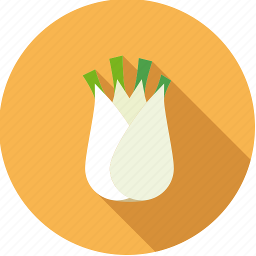 bulb, fennel, food, fresh, groceries, vegetable icon