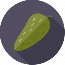 food, gherkin, groceries, pickle, vegetable icon