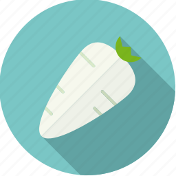 food, fresh, groceries, horseradish, root, vegetable icon