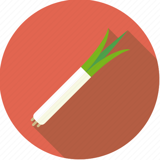 food, fresh, groceries, leek, spring onion, vegetable icon
