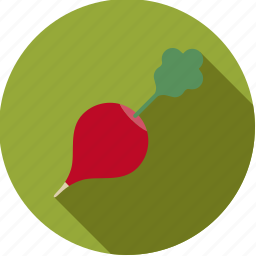 food, fresh, groceries, radish, red, root, vegetable icon