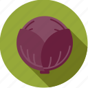 cabbage, food, fresh, groceries, red, vegetable icon