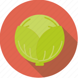 cabbage, food, fresh, groceries, vegetable, white icon