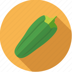food, fresh, gourd, groceries, vegetable, zucchini icon