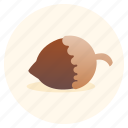 hazelnut, nuts, protein, shelled fuit, vegan, vegetarian icon