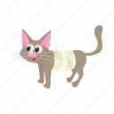 animal, blog, cartoon, cat, injury, pet, site icon