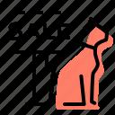 cat, veterinary, pet, pets for sale
