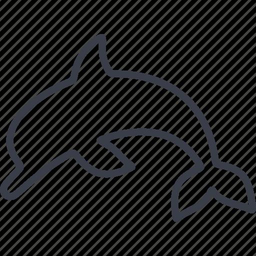 animal, dolphin, mammal, nature, veterinary icon