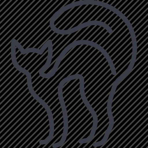 animal, animals, cat, pet, veterinary icon